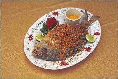 Chita fish